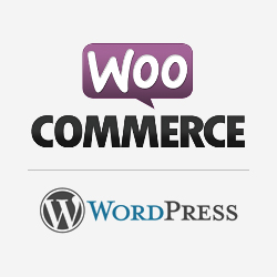 wordpress ecommerce design and development in dehradun