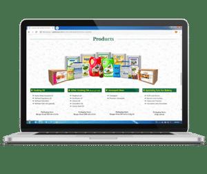 Website design and development in Dehradun