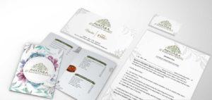 Best Brand Identity Design Services in Dehradun